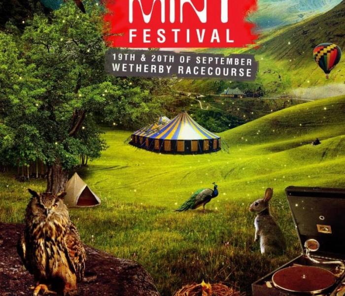 MINT Festival Announces Line-Up For 2015