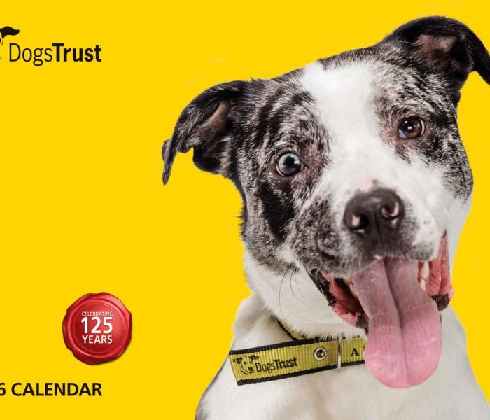 Dogs Trust Releases Book To Celebrate 125 Years Of The Charity