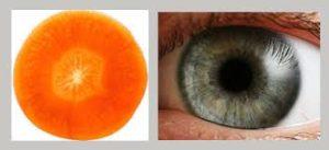 carrot eye