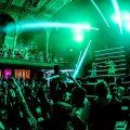 Bongo's Bingo Bounces Back To Albert Hall