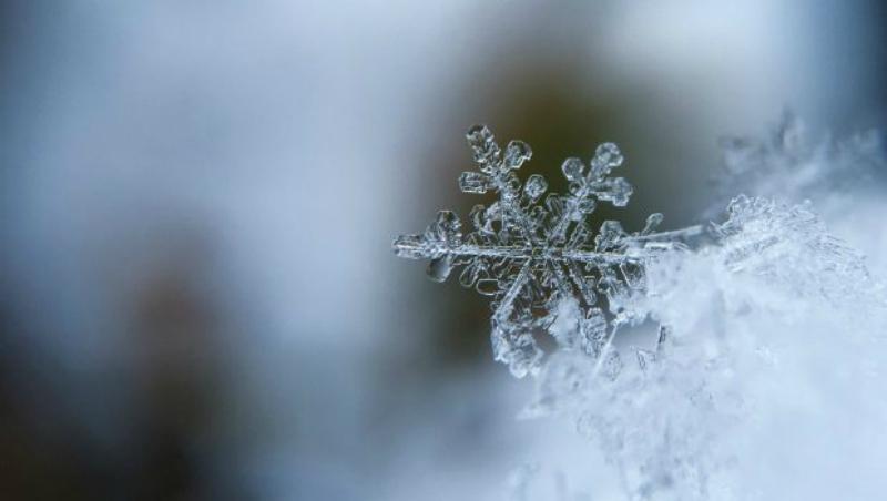 Snowflake 800
