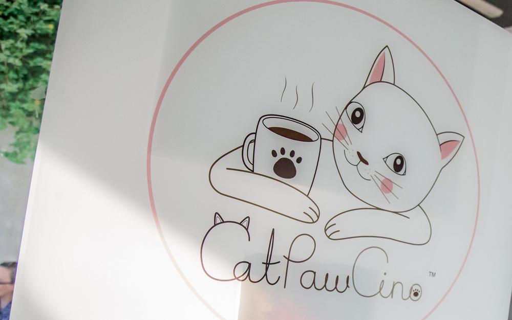 Catpawcino