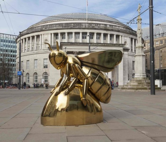 "Golden ""Au"" bee spotted in city centre – would you like to sponsor a bee for charity?"