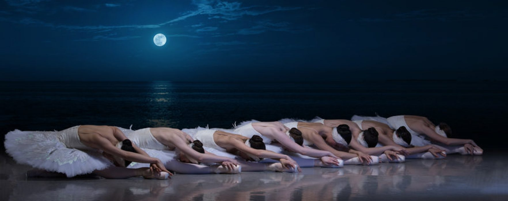 What&#8217;s On For Children &#8211; <br><i>My First Ballet: Swan Lake</i> at the Opera House Manchester