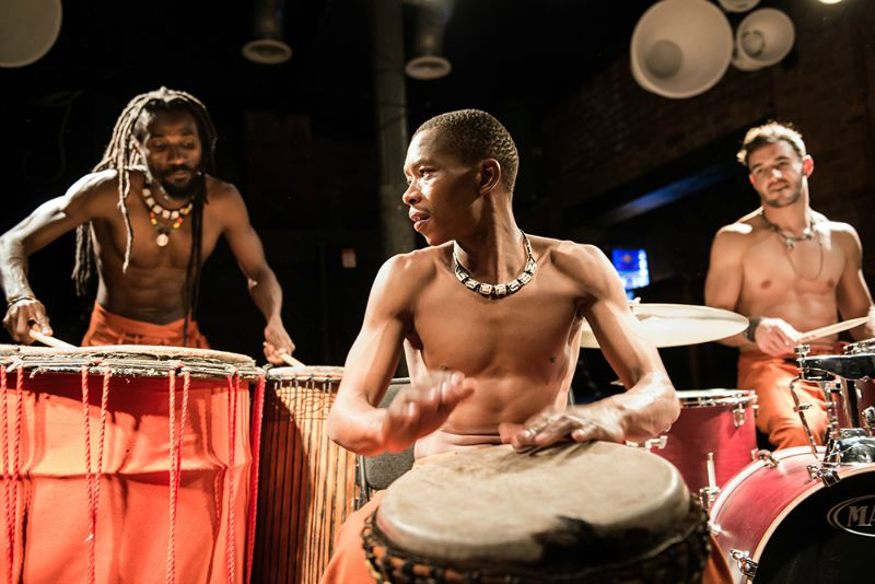 Drum Tribe