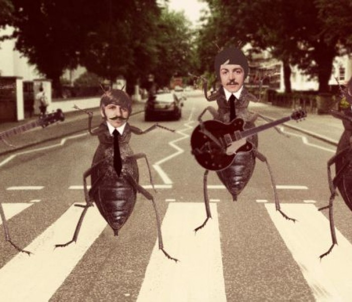 The Printworks Extends It's Competition Deadline For Beatles Lookalikes‏