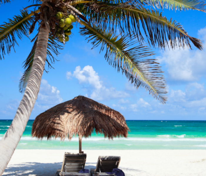 Goddess Acumen Launches 7 Day Barbados Retreat