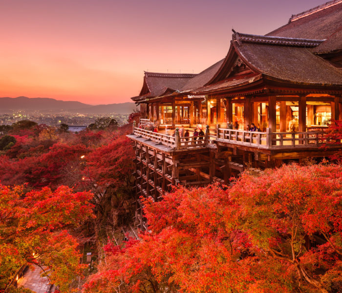 Leaves Falling, Autumn Calling: Viva's Top Seasonal Travel Deals
