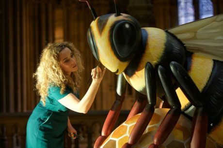 Bee In The City Jodie Silverman