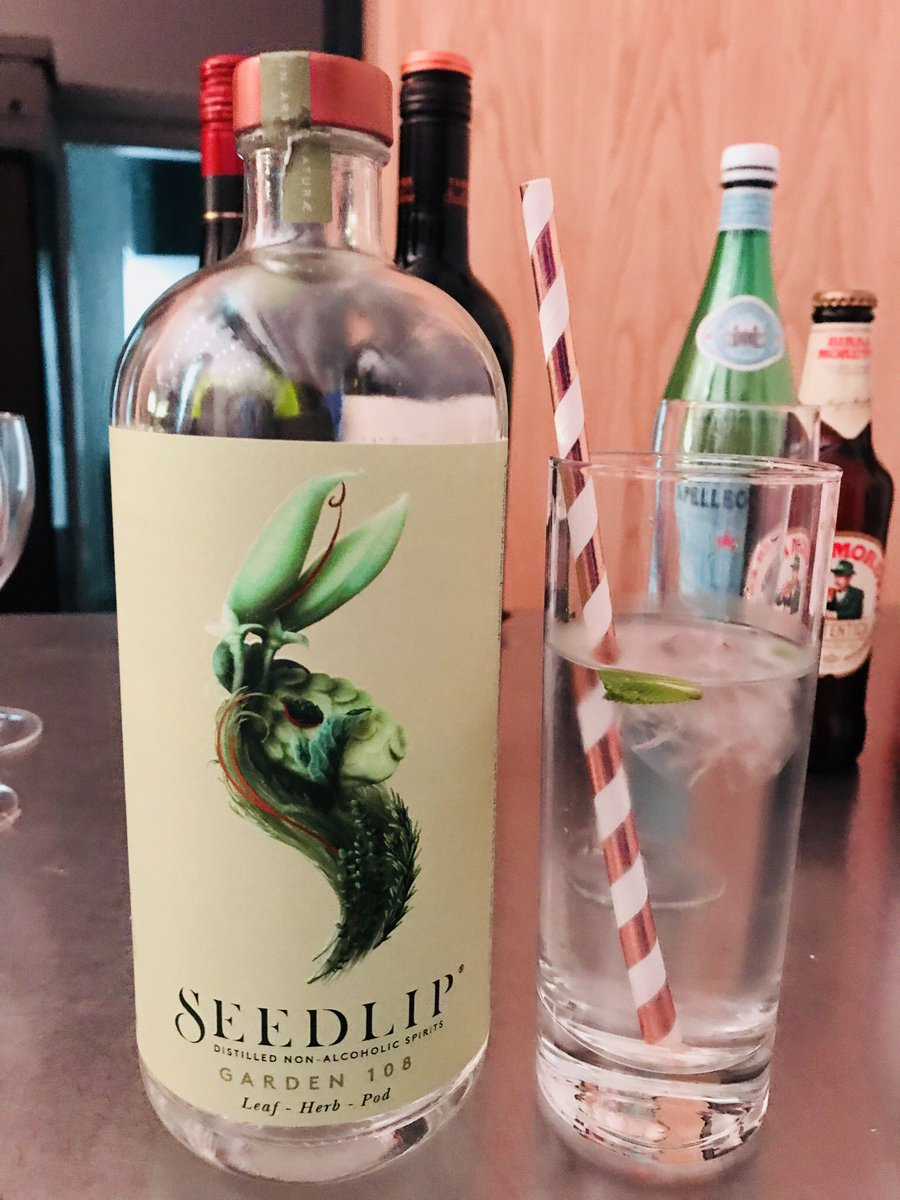 Non alcoholic gin and tonic