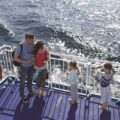 Here's how you can get ferry tickets for free…