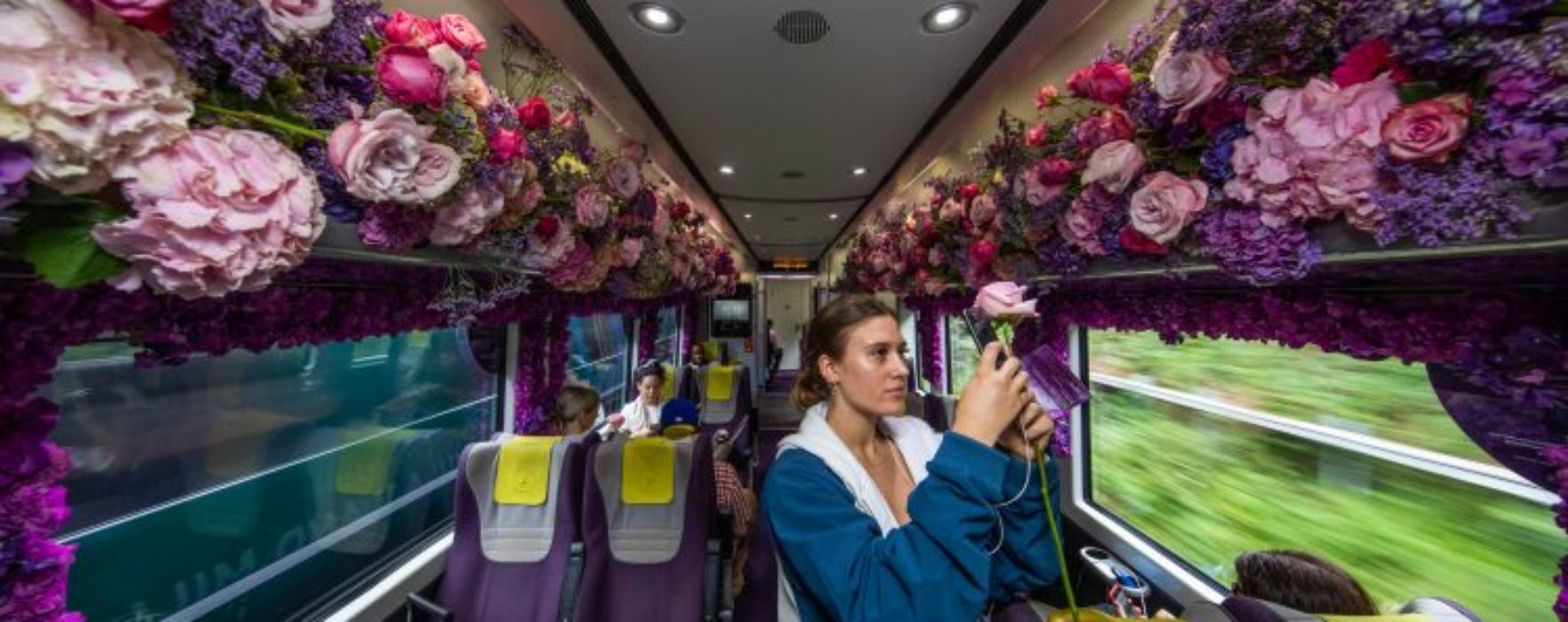 WATCH: Is this the fuchsia of travel?