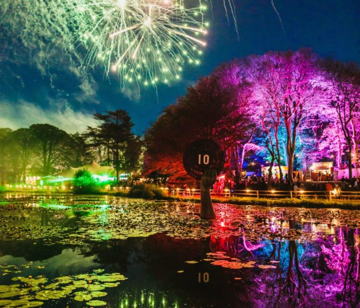 A party in the woods for Gottwood's 10th Anniversary