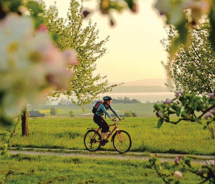 Inspired by Tour de France? These self-guided cycling holidays and tours offer everything for two-wheeled enthusiasts