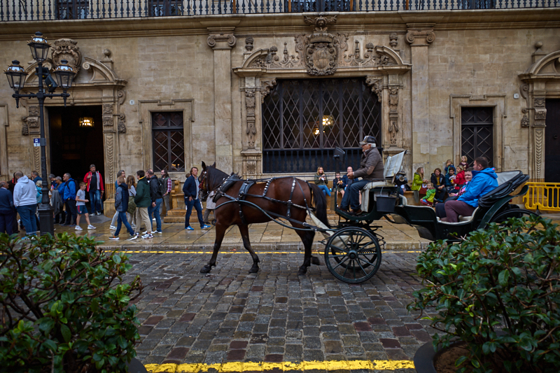 Horse and carriage rides in Palma, Mallorca