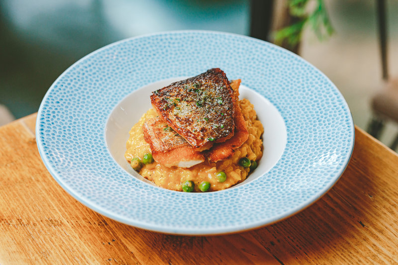 There's a new menu at Canto and the food is as comforting as the restaurant's warm & relaxed interior